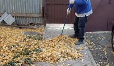 A,Man,Is,Sweeping,A,Path,From,Fallen,Leaves,In